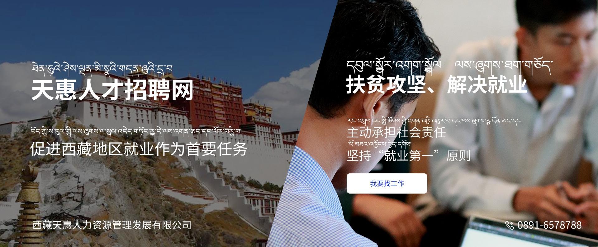 西藏天惠人才网